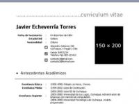 formato curriculum chile