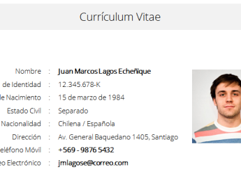 Formatos De Curriculum Vitae En Word Isla Nuevodiario Co