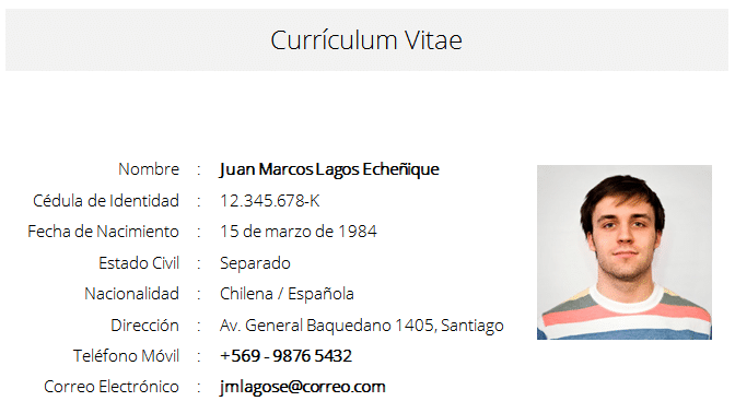 formato curriculum vitae word editable descarga