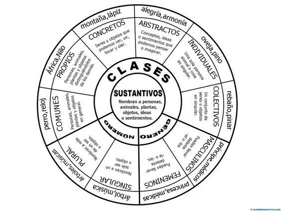 mapa conceptual circular