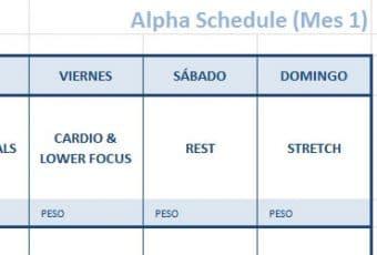 Focus T25 calendario para imprimir en Excel