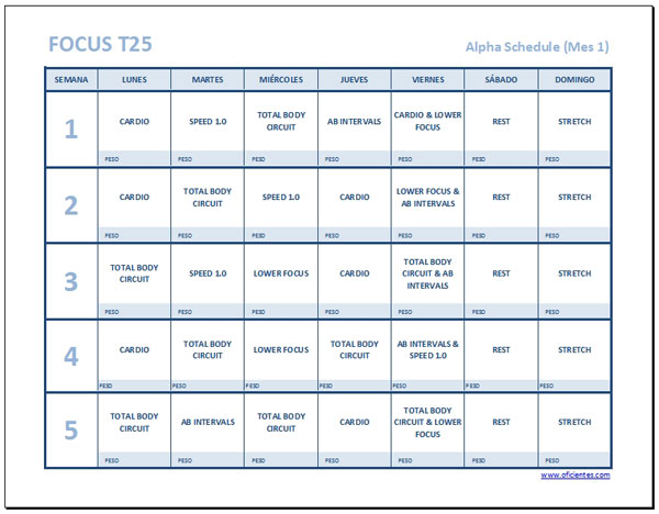 focus t25 calendario español